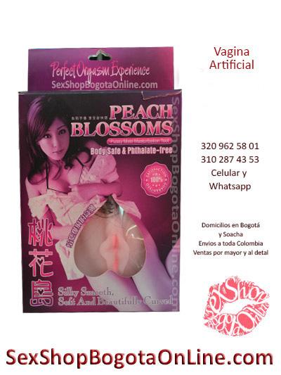 vagina artificial realista masturbador para hombre satisfaccion sex shop en linea domicilio soacha envios colombia cali medellin barranquilla ibague